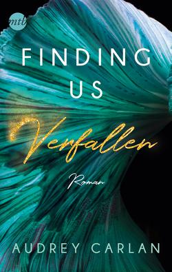 Finding us – Verfallen von Carlan,  Audrey, Hölsken,  Nicole