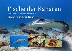 Fische der Kanaren von Majewski,  Martin
