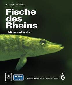 Fische des Rheins von Buhse,  Günter, Lelek,  Anton