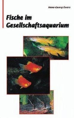 Fische im Gesellschaftsquarium von Evers,  Hans G