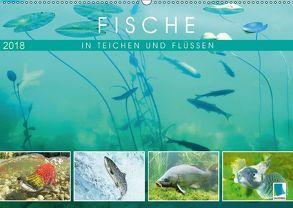 Fische in Teichen und Flüssen (Wandkalender 2018 DIN A2 quer) von CALVENDO,  k.A.