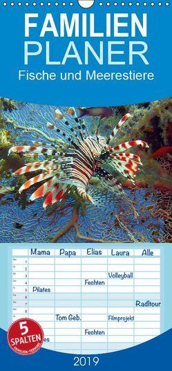 Fische und Meerestiere – Familienplaner hoch (Wandkalender 2019 , 21 cm x 45 cm, hoch) von Stanzer,  Elisabeth