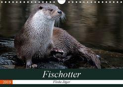 Fischotter, flinke Jäger (Wandkalender 2019 DIN A4 quer) von R Bogner,  J