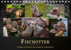 Fischotter – putzige Kerlchen und elegante Schwimmer (Tischkalender 2019 DIN A5 quer) von Roder,  Peter