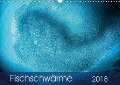 Fischschwärme (Wandkalender 2018 DIN A3 quer) von Jager,  Henry