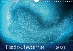 Fischschwärme (Wandkalender 2021 DIN A4 quer) von Jager,  Henry
