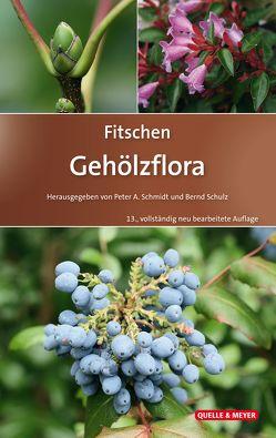 Fitschen – Gehölzflora von Hecker,  Ulrich, Schmidt,  Peter A, Schulz,  Bernd
