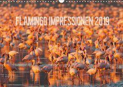 Flamingo Impressionen 2019 (Wandkalender 2019 DIN A3 quer) von Gerlach,  Ingo