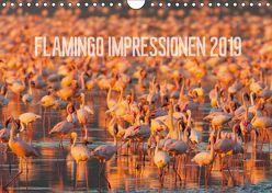 Flamingo Impressionen 2019 (Wandkalender 2019 DIN A4 quer) von Gerlach,  Ingo