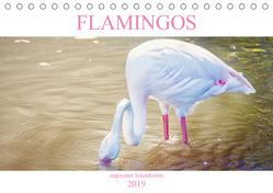 Flamingos – imposante Schönheiten (Tischkalender 2019 DIN A5 quer) von Brunner-Klaus,  Liselotte