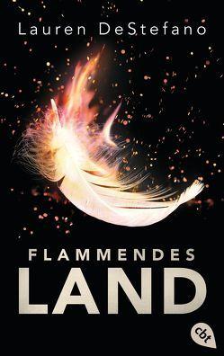 Flammendes Land von Decker,  Andreas, DeStefano,  Lauren