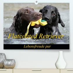 Flatcoated Retriever (Premium, hochwertiger DIN A2 Wandkalender 2020, Kunstdruck in Hochglanz) von / Beatrice Müller,  BeaM