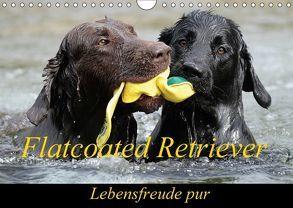 Flatcoated Retriever (Wandkalender 2018 DIN A4 quer) von / Beatrice Müller,  BeaM