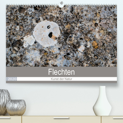 Flechten – Kunst der Natur (Premium, hochwertiger DIN A2 Wandkalender 2020, Kunstdruck in Hochglanz) von Dietz,  Rolf