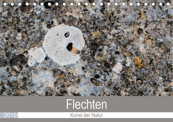 Flechten – Kunst der Natur (Tischkalender 2019 DIN A5 quer) von Dietz,  Rolf