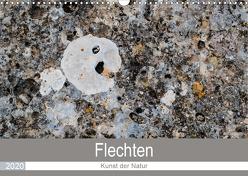 Flechten – Kunst der Natur (Wandkalender 2020 DIN A3 quer) von Dietz,  Rolf