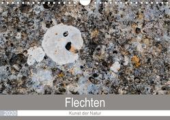 Flechten – Kunst der Natur (Wandkalender 2020 DIN A4 quer) von Dietz,  Rolf