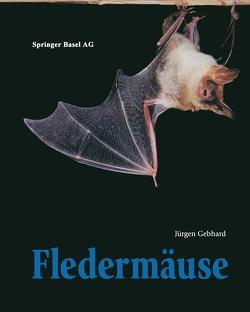 Fledermäuse von Gebhard,  Jürgen