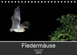 Fledermäuse – Jäger der Nacht (Tischkalender 2020 DIN A5 quer) von Schäfer,  Otto