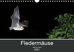 Fledermäuse – Jäger der Nacht (Wandkalender 2021 DIN A4 quer) von Schäfer,  Otto