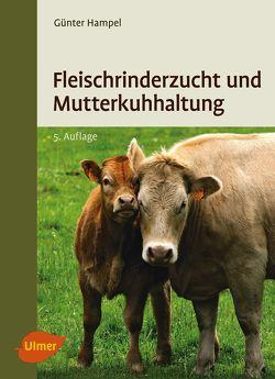 Fleischrinderzucht und Mutterkuhhaltung von Hampel,  Günter