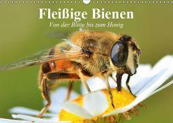 Fleißige Bienen. Von der Blüte bis zum Honig (Wandkalender 2019 DIN A3 quer) von Stanzer,  Elisabeth
