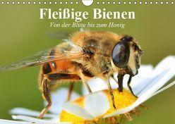 Fleißige Bienen. Von der Blüte bis zum Honig (Wandkalender 2019 DIN A4 quer) von Stanzer,  Elisabeth