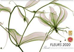 FLEURS 2020 – Florale Fotokunst mit Röntgenstrahlen (Wandkalender 2020 DIN A2 quer) von Martin Strunk,  Dr.