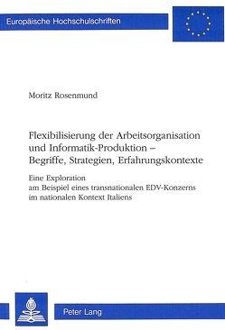 Flexibilisierung der Arbeitsorganisation und Informatik-Produktion — Begriffe, Strategien, Erfahrungskontexte von Rosenmund,  Moritz