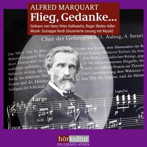 Flieg, Gedanke… von Adler,  Walter, Hallwachs,  Hans Peter, Marquart,  Alfred