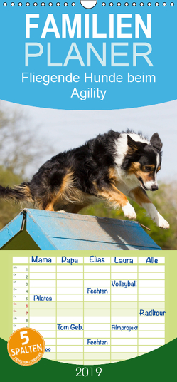 Fliegende Hunde beim Agility – Familienplaner hoch (Wandkalender 2019 , 21 cm x 45 cm, hoch) von Scholze,  Verena