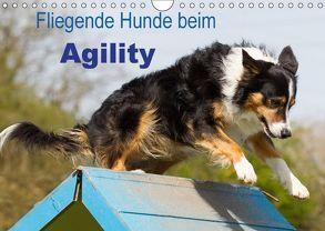 Fliegende Hunde beim Agility (Wandkalender 2018 DIN A4 quer) von Scholze,  Verena