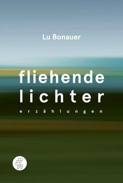 Fliehende Lichter von Bonauer,  Lu