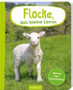Flocke, das kleine Lamm von Kopf,  Jutta