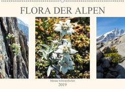 Flora der Alpen (Wandkalender 2019 DIN A2 quer) von Schwarzfischer Miriam,  Fotografin