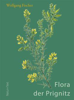 Flora der Prignitz von Botanischer Verein von Brandenburg und Berlin gegr. 1859 e.V., Fischer,  Wolfgang