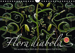 Flora diabola – Die wundersame Welt des Fotodesigners Olaf Bruhn (Wandkalender 2019 DIN A4 quer) von Bruhn,  Olaf