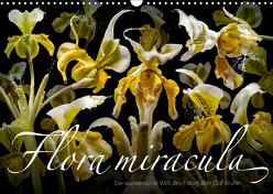 Flora miracula – Die wundersame Welt des Fotografen Olaf Bruhn (Wandkalender 2019 DIN A3 quer) von Bruhn,  Olaf