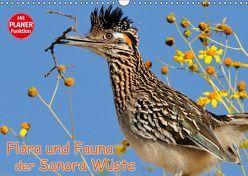Flora und Fauna der Sonora Wüste (Wandkalender 2019 DIN A3 quer) von Wilczek,  Dieter-M.