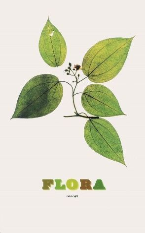 Flora von Knapp,  Sandra, Knight,  Nick