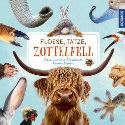 Flosse, Tatze, Zottelfell von Köhrsen,  Andrea