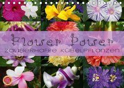 Flower Power – Zauberhafte Kübelpflanzen (Tischkalender 2018 DIN A5 quer) von Cross,  Martina