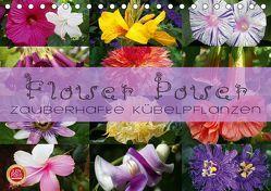 Flower Power – Zauberhafte Kübelpflanzen (Tischkalender 2019 DIN A5 quer) von Cross,  Martina