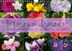 Flower Power – Zauberhafte Kübelpflanzen (Wandkalender 2019 DIN A4 quer) von Cross,  Martina