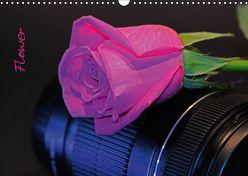 Flower (Wandkalender 2019 DIN A3 quer) von Damm,  Andrea