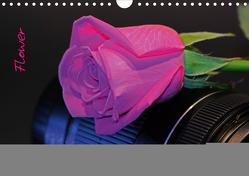 Flower (Wandkalender 2020 DIN A4 quer) von Damm,  Andrea