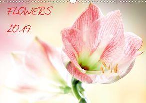 Flowers / 2019 (Wandkalender 2019 DIN A3 quer) von und Max Waldecker,  Axel