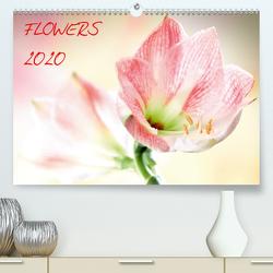 Flowers / 2020 (Premium, hochwertiger DIN A2 Wandkalender 2020, Kunstdruck in Hochglanz) von und Max Waldecker,  Axel