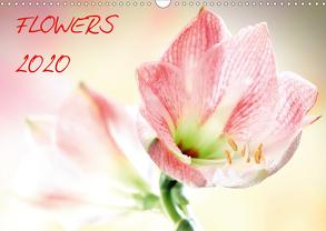 Flowers / 2020 (Wandkalender 2020 DIN A3 quer) von und Max Waldecker,  Axel