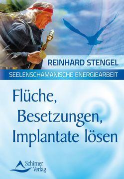Flüche, Besetzungen, Implantate lösen von Stengel,  Reinhard